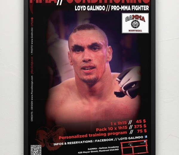 Mixed Martial Art  Affiche Promotionnelle
